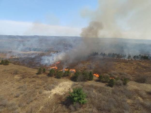 For the first time ever, the DEC initiated a prescribed fire on Sonyea State Forest this month.