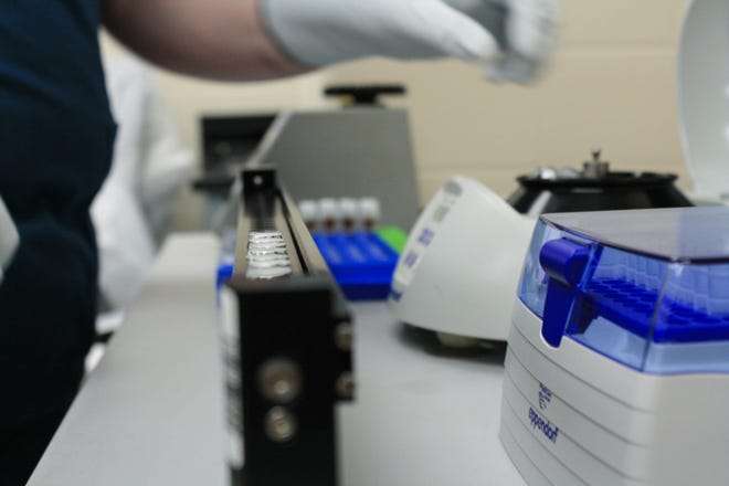 A lab employee for the Kansas Department of Health and Environment works to sequence COVID-19 samples at their Topeka facility, which experts note is vital in the ongoing pandemic fight.