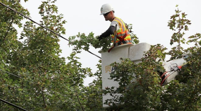 First Energy has kicked off tree trimming operations in the area.