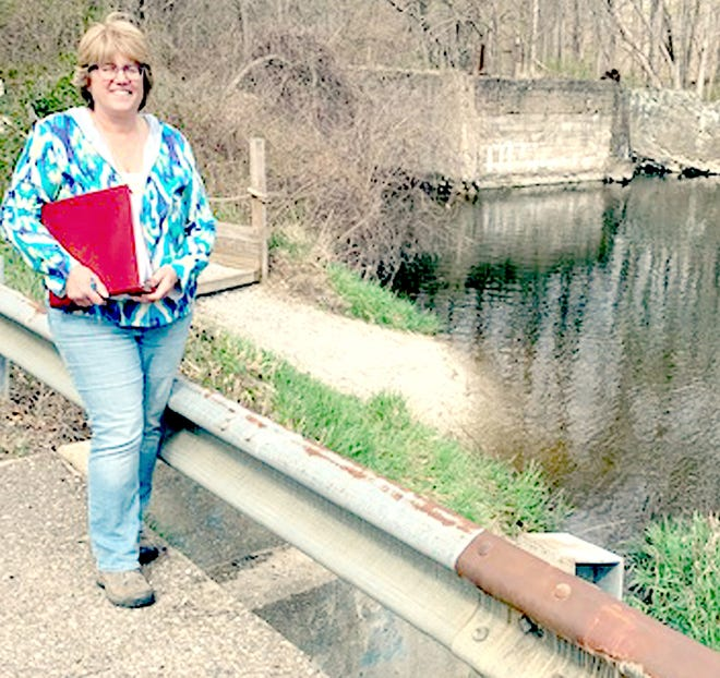 Carolyn Grace, director of St. Joseph County Conservation District, said a dam, former mill and another obstruction in Portage River will be removed in summer 2021.