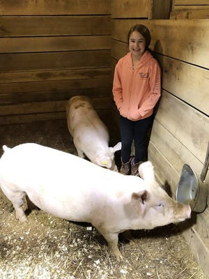 Sophia Falotico of Etowah County is shown with her entries in the Northeast Alabama 4-H Pig Squeal Show and Auction, which will be April 24 in Sand Rock.
