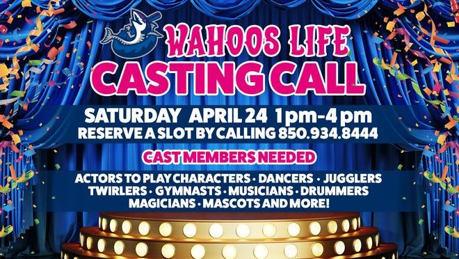 Individuals are encouraged to audition to be considered to perform at a Blue Wahoos game in 2021 and/or for a position with the team's Flight Squad in-game entertainment.