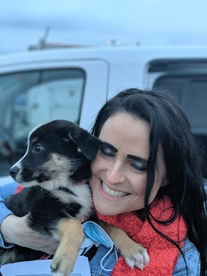 Jennifer Cate picks up her Boonie Flight Project dog Isla in Dover at a Hannaford parking lot after a long journey from Guam.