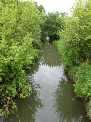 Geneseo creek flows through heavy brush as it works its way through town.