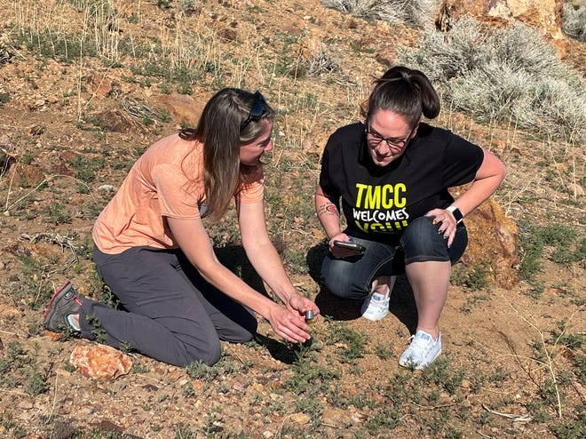 TMCC biology instructor Megan Lahti and undergraduate research student Angela Sanchez will help conduct Ecoblitz, a one-day event at Rancho San Rafael on May 7. Citizen scientists are encouraged to join them to help collect data.