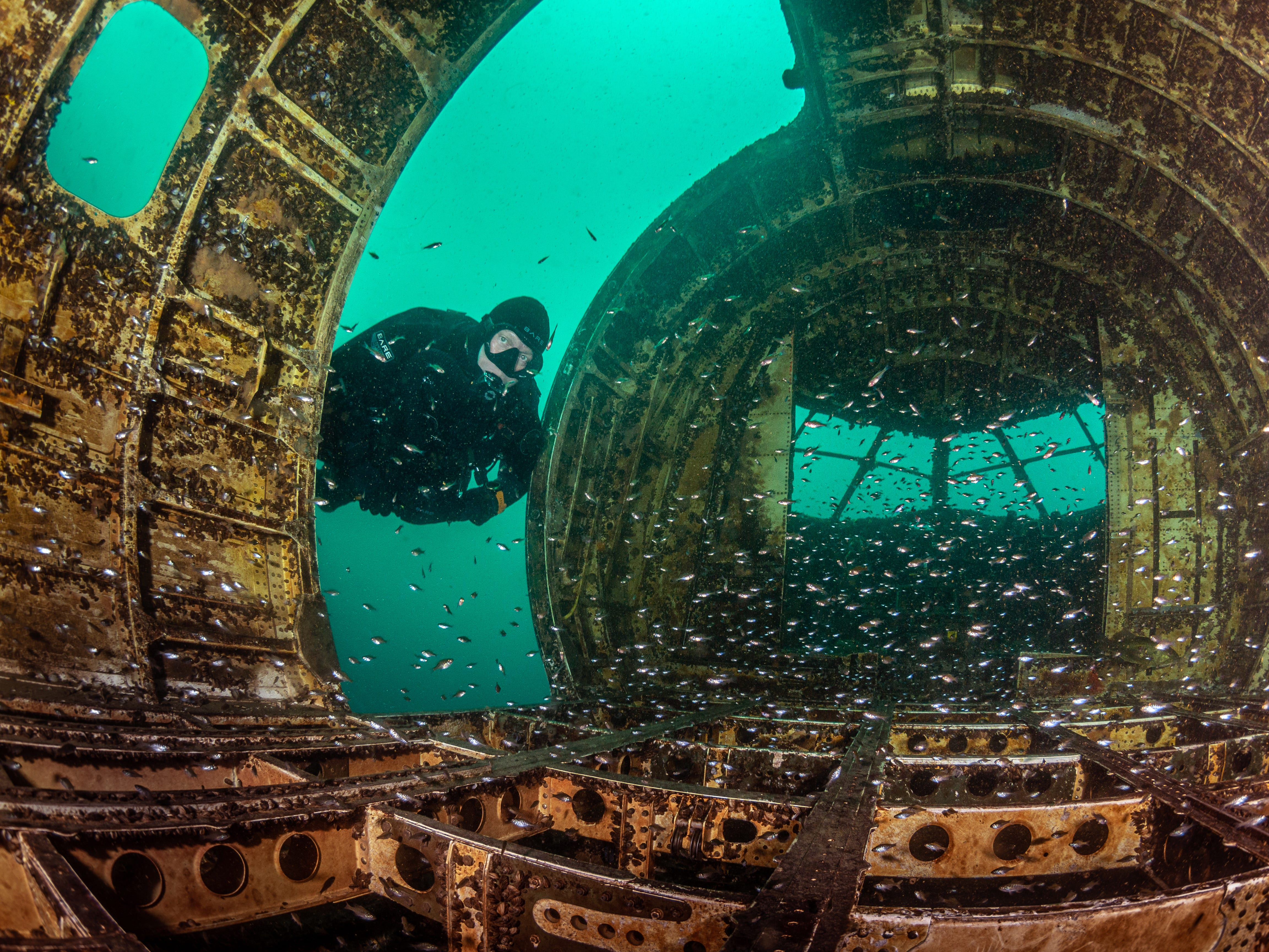 Amazing scuba-diving locations right here in the US