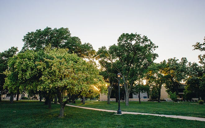 The City of Hays and Fort Hays State University will celebrate Arbor Day 2021 on Thursday, April 22 at 12 pm on the FHSU Quad.
