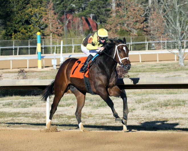 Caddo River and jockey Florent Geroux win the $150,000 Smarty Jones on Jan. 22 at Oaklawn Park in Hot Springs, Ark. (Photo courtesy of Coady Photography.)