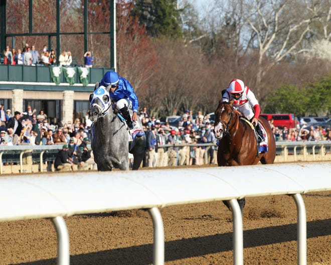Essential Quality, left, and Highly Motivated battle down the stretch in the Grade 2 Blue Grass on April 3 at Keeneland. Essential Quality won by a neck. (Photo courtesy of Coady Photography.)