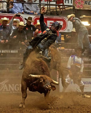 Clayton Sellars competes during the Xtreme Bulls event at the San Angelo Rodeo on Sunday, April 18, 2021.