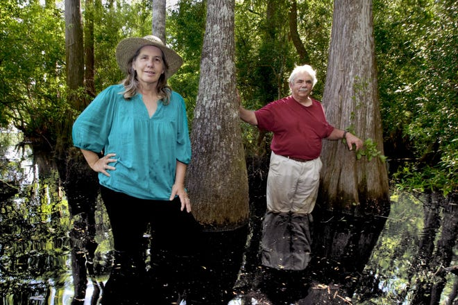 The late Anne Rudloe, a local environmentalist, co-founder with husband Jack Rudloe of the Gulf Specimen Marine Lab.