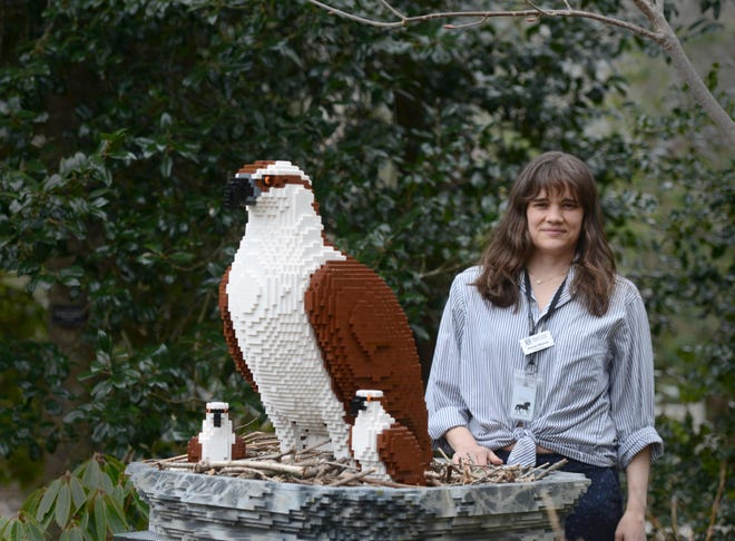 Assistant curator Amanda Wastrom stands beside an osprey nest made from 9,250 LEGOs, one of many LEGO sculptures around the grounds at Heritage Museums & Gardens.