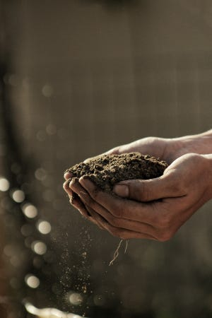 Soil is composed of the carbon that comprises all of the organic material on planet Earth.