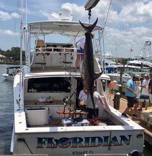 A 436-pound swordfish is lifted out of the cockpit of the Floridian charter boat on April 16, 2021 by the boat lift from Sailfish Marina in Stuart.