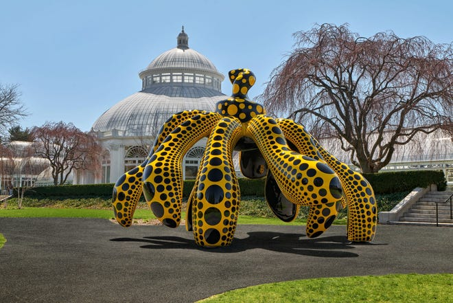 """Dancing Pumpkin"""" is among the works by Japanese artist Yayoi Kusama featured at """"Kusama: Cosmic Nature"""" at the New York Botanical Garden."""