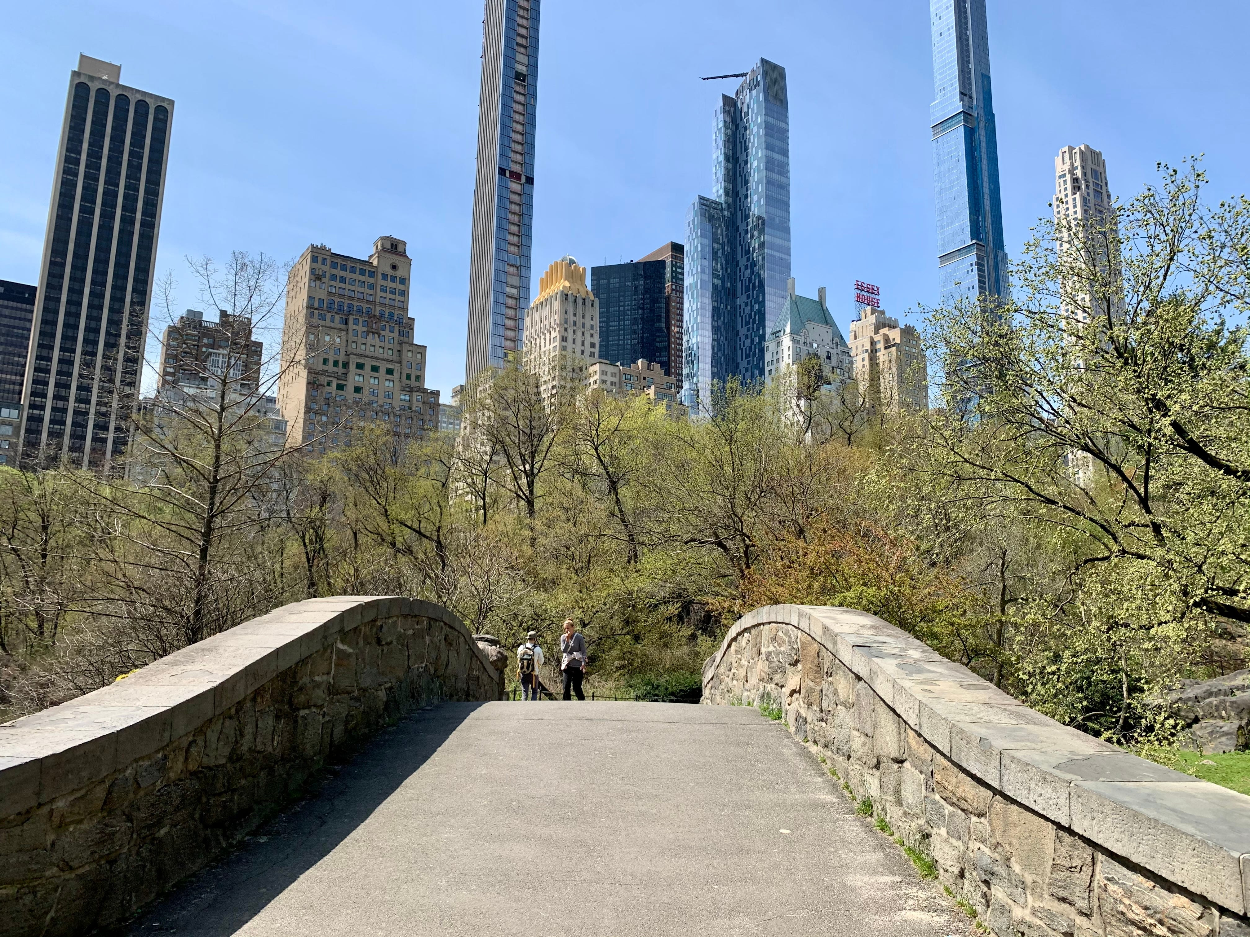 Central Park is starting to bloom for spring 2021.