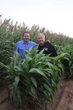 Gayland Ward and his son, Carson, are pictured in the Hereford seed production fields.