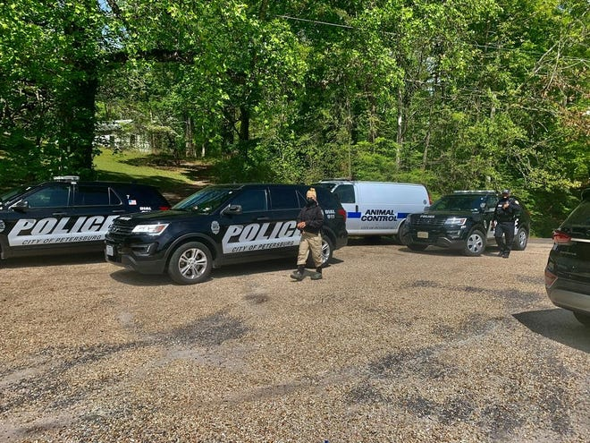 Petersburg Police responded to Wilcox Lake on April 17 where a group of residents discovered the remains of several dogs in the woods.