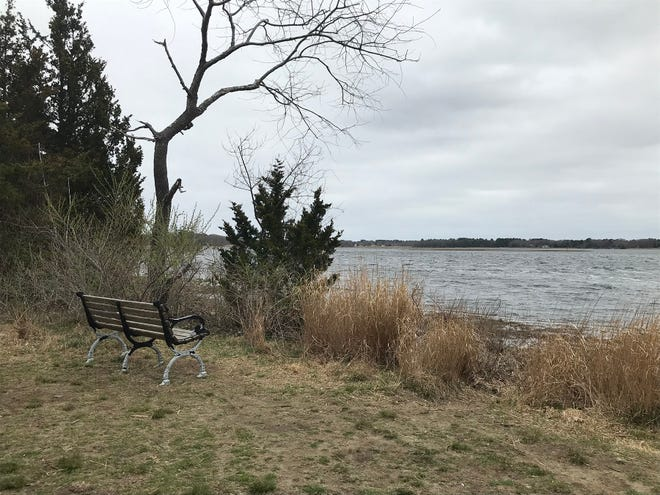 Benches in the Osamequin Nature Preserve offer sweeping views of the Barrington River's Hundred Acre Cove.