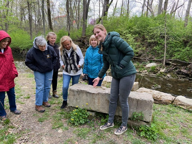 Lowe-Volk naturalist Chelsea Gottfried gestures towards an unknown buttercup species during a serendipity walk with members of Earth, Wind and Flowers Garden Club (L to R) Sarah Kalb, Cheryl Corney, Rose Guinther, Helen Guinther and Beverly Sipe.