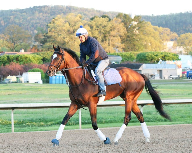 Get Her Number trains at Oaklawn Park in preparation for the Arkansas Derby in Hot Springs, Ark.