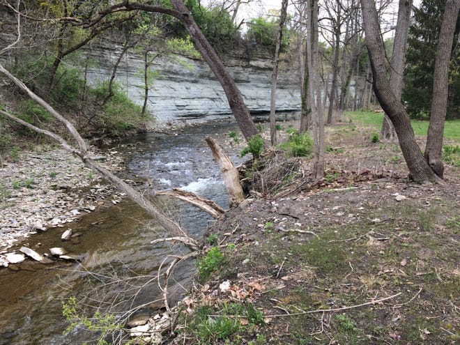 The Richmond Parks and Recreation Department invites volunteers to assist cleaning trash and invasive species from the Whitewater Gorge.