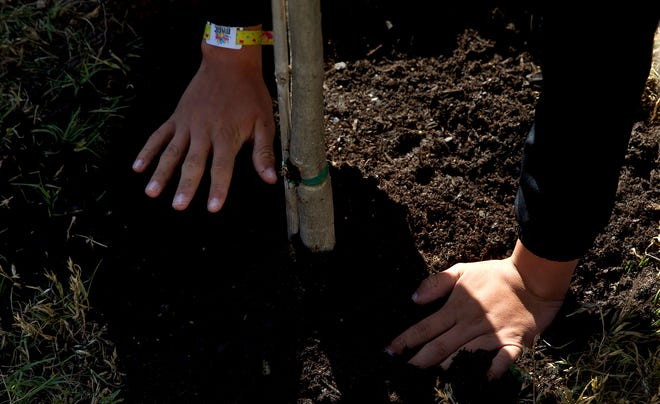 Students at Lincoln Middle School plant a tree on school grounds to celebrate Earth Day on Tuesday, April 20, 2021.
