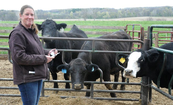 Pam Haley stands with a bottle of medicine and a syringe in front of some of her Simmental beef cattle. She was able to purchase enough medicine to get her through the spring. Her veterinarian had recently received a new shipment.
