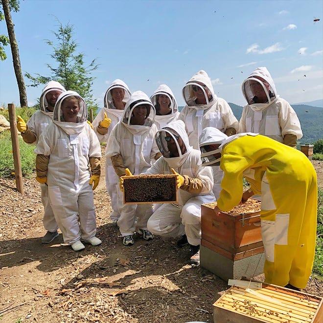 Tour participants at Killer Bees Honeybee Farm inspect a hive.