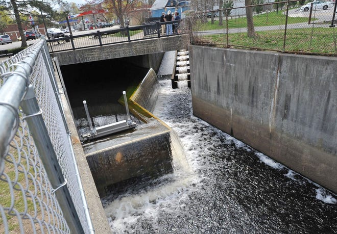 A new diversion wall keeps herring out of the flood control tunnel reducing fish kills in the Weymouth Herring Run, Wednesday, April 21, 2021. Tom Gorman/For The Patriot Ledger
