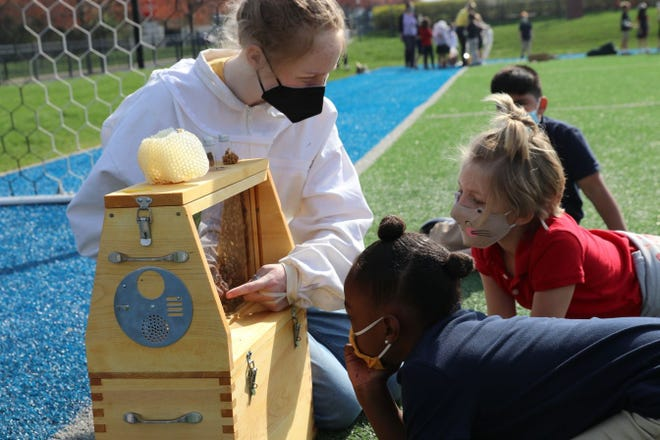 Blais Blackburn, a Clintonville resident and junior at Wellington, shows honeybees and their hive April 7 to first-graders (front to back) Elle Green of Bexley, Lauren Roginson of Upper Arlington and Udhay Dhillon of Upper Arlington. Members of the school's Apiary Club put on the demonstration to supplement classroom lessons the first-graders are learning about bees and their roles in the ecosystem.