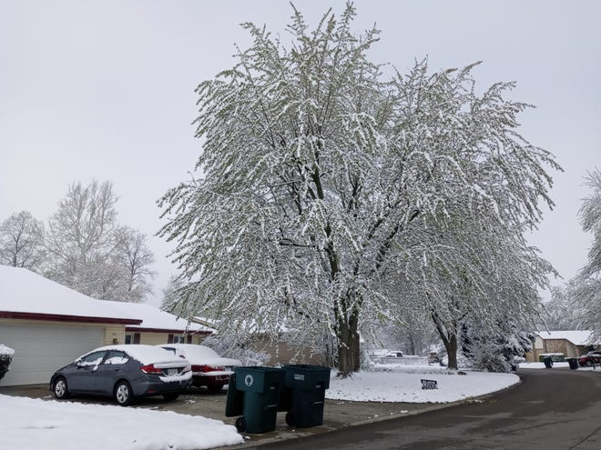 """Snow blanketed East Central Indiana Wednesday morning after a large overnight snowfall event. Parts of Delaware County saw up to 4"""" of snow overnight."""
