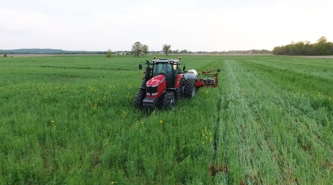 The on-farm study revealed that increasing cropping diversity and using cover crops, like those seen here on Brandt's farm near Carroll, Ohio, lead to significantly higher per-acre net profits.