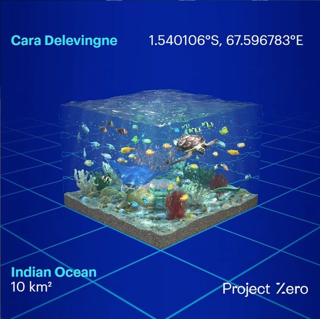 "Cara Delevingne joins Project Zero's initiative to save oceans. This is her own unique ocean coordinate to ""look after"" - others can get their own by making a donation."