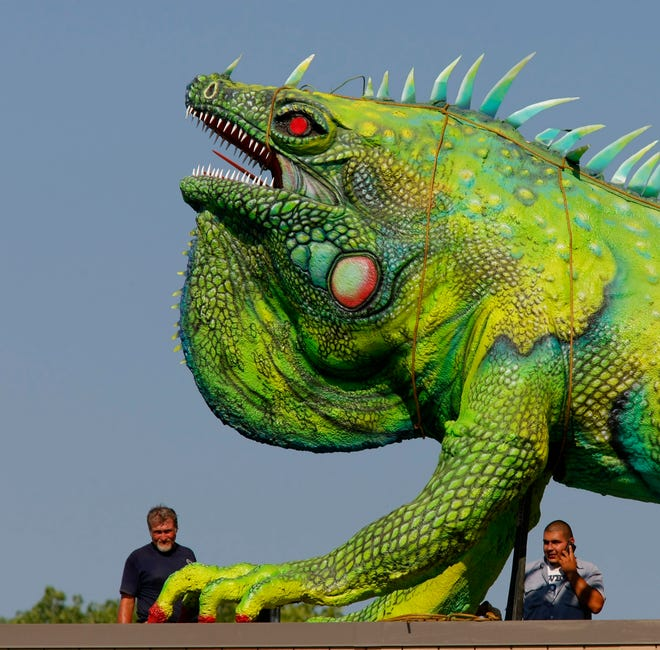 "Workers do some final checks after a helicopter positions a fanciful 40-foot long sculpture of an iguana called ""Iggy"" atop the Fort Worth Zoo administration building in 2010. The iguana by Texas artist Bob ""Daddy-O"" Wade was once on the Lone Star Cafe in New York City, but Lee and Ramona Bass bought it and stored it for several years. The iguana, which weighs 2,600 pounds (including the steel base) is on loan to the zoo."
