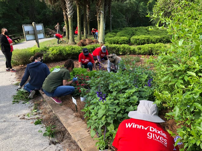 In a celebration of Earth Day, Winn-Dixie employees help beautify the grounds and tend to the community garden at Tree Hill Nature Center in Jacksonville.