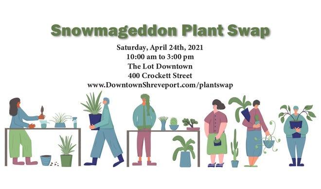 Snowmageddon Plant Swap