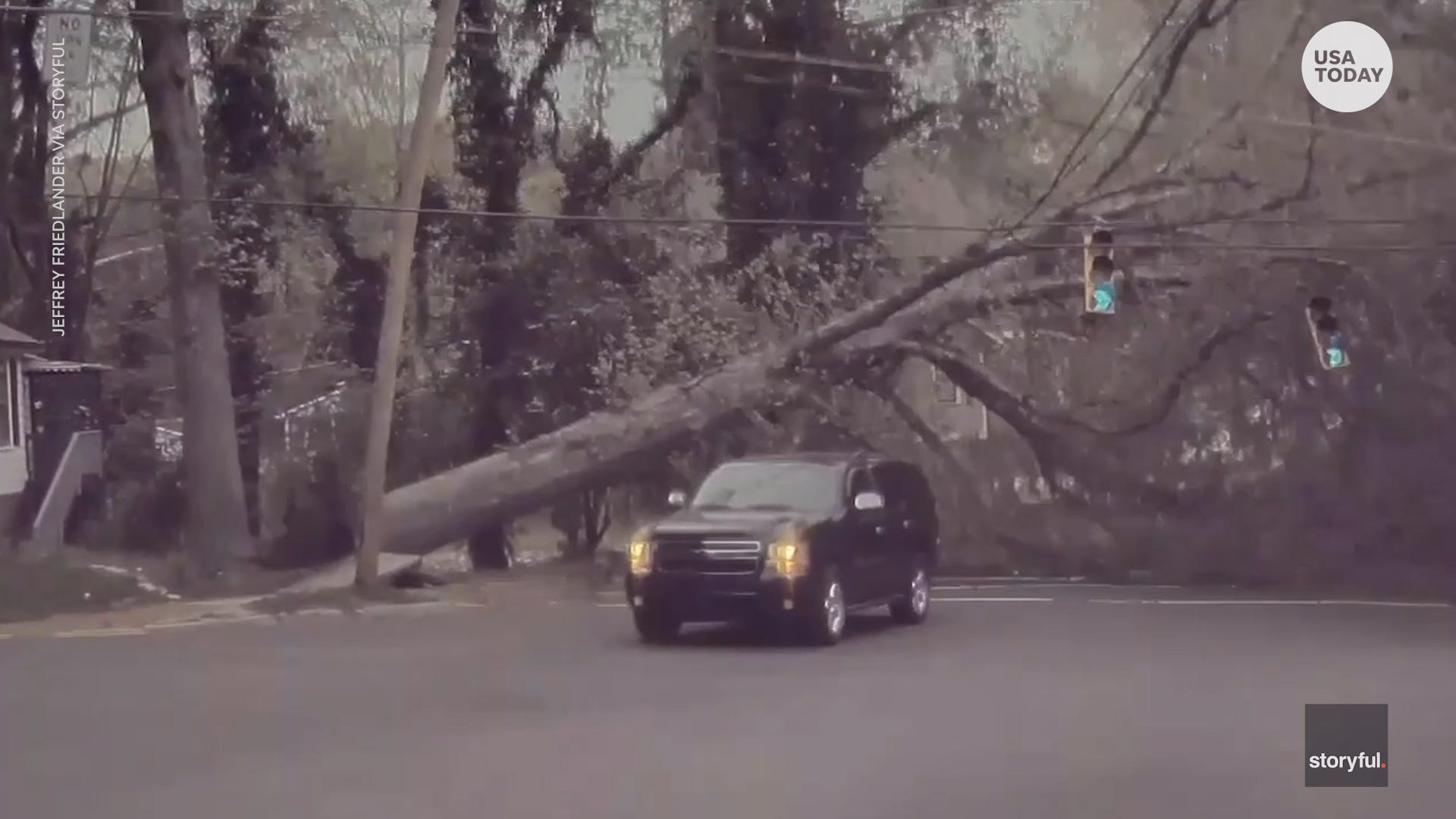 A moving SUV has a very close call with a massive falling tree