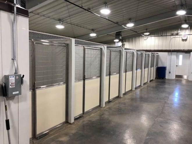 Some of the indoor kennels which were added to the new Animal Management & Welfare facility.