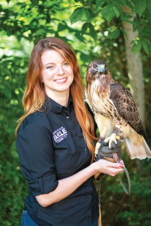 Robyn Miller of the American Eagle Foundation Photos Special to The Oak Ridger