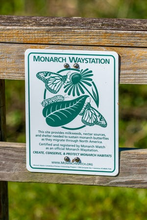 Learn how to build your own Monarch Butterfly waystation May at Myriad Botanical Gardens.