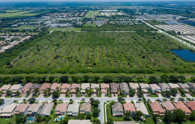 A developer is trying again to build 432 housing units and more than 260,000 square feet of commercial space on this 39-acre site next to the Canyon Lakes development in the Agricultural Reserve west of Boynton Beach.