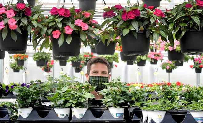 Dustyn Miller, Miller Plant Farm head grower of specialty and vegetative annuals, poses with some hanging baskets at the nursery Thursday, April 22, 2021. Bill Kalina photo