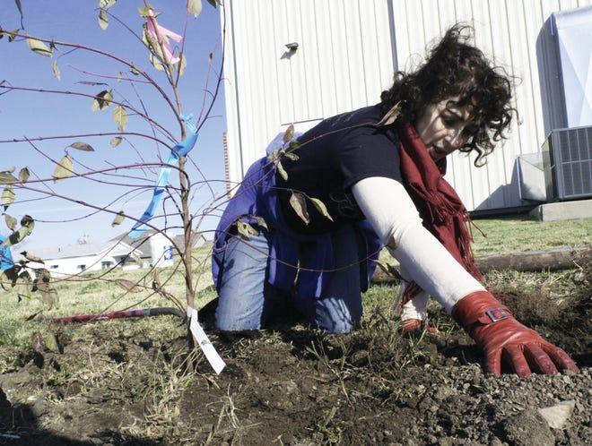 Volunteers come to help planting trees in Joplin after tornado.