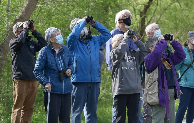 A group stops to watch birds during a stop on the Mahoning Valley Trail near East Gaskill Street on a nature trail hike led by Chuck McClaugherty, far left, longtime former director of The Huston-Brumbaugh Nature Center on Saturday morning.