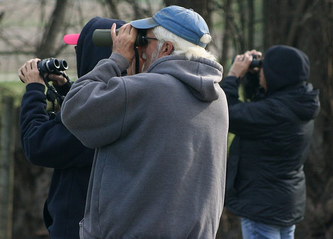 A bird walk at Byers Woods Saturday, April 24, 2021 led by Tim Leslie, foreground, of the Greater Mohican Audubon Society was one of the events held during this year's Mohican Wildlife Weekend.   LIZ A. HOSFELD/FOR TIMES-GAZETTE.COM