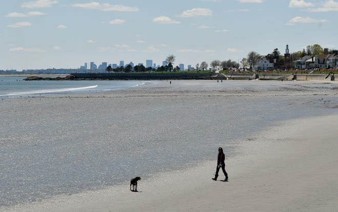 A woman and her dog play at Kings Beach on Tuesday, May 5, 2020. [Wicked Local Staff Photo / David Sokol]