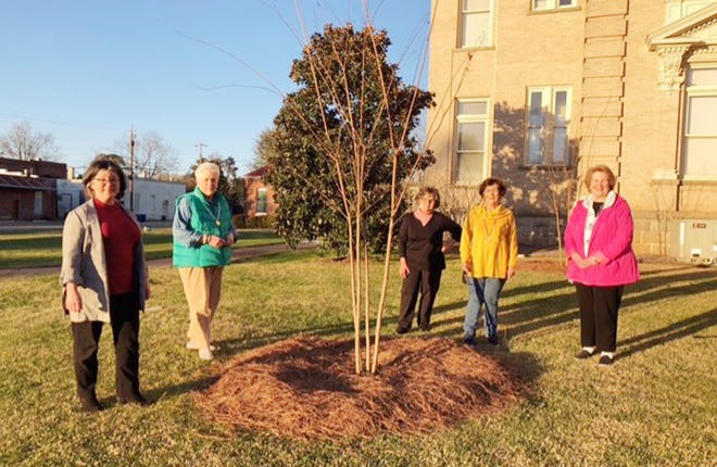 Louisville Garden Club members pose with one of the two crape myrtle trees they recently added to the courthouse grounds in celebration of Arbor Day.