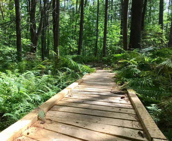 Trail bridge at Doe Farm in Durham, N.H.
