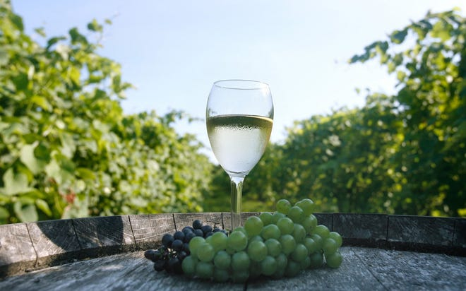 Set on lush farmland along the Sakonnet River, Greenvale Vineyards is open daily in Portsmouth.
